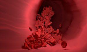 globulos rojos altos que significa