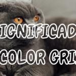 Qué Significa el Color GRIS
